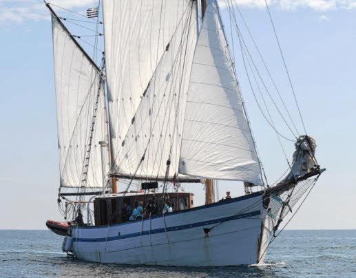 base-aujourd-hui-a-bordeaux-le-refuge-des-marins_1914139